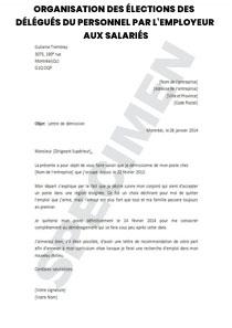 Organisation Des Elections Des Delegues Du Personnel Par L Employeur Aux Salaries Startdoc