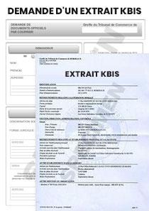 Demande D Un Extrait Kbis Startdoc